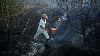 """صورة ادارة الرئيس البرازيلي تدعو ماكرون للاهتمام بـ""""بلاده ومستعمراته"""" وترفض مساعدة دول مجموعة السبع لإخماد الحرائق في غابات الامازون"""