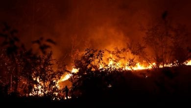 Photo of Brazil rejects G7 aid to fight Amazon fires