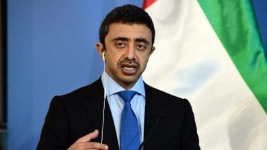 Photo of UAE FM: Efforts should focus on confronting Yemen's Houthis, terrorist groups