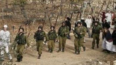Photo de Palestine : Les colons vandalisent en Cisjordanie
