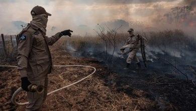 Photo of Bolsonaro downplays severity of Amazon fires as burning ban takes effect