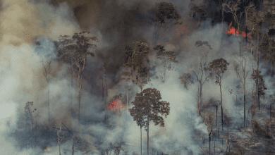 Photo de Incendies en Amazonie. Le Brésil accepte finalement l'aide internationale