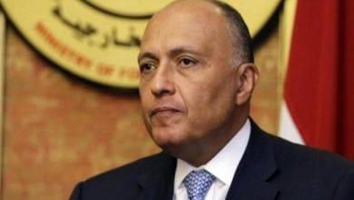 صورة رسائل مصرية إلى قادة 7 دول عربية