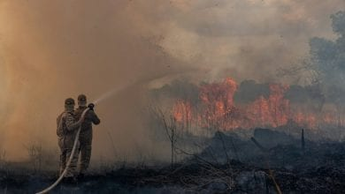 Photo of As global leaders meet, the Amazon rainforest burns