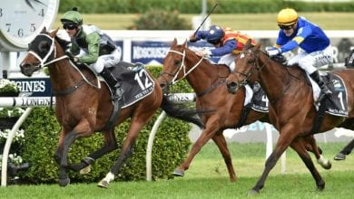 Photo of Yes Yes Yes wins turf racing's biggest prize, The Everest