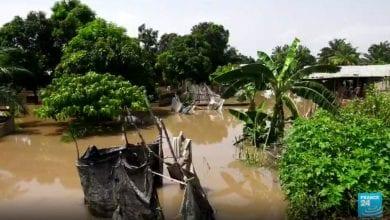 Photo de Risque d'épidémies en République centrafricaine après les inondations