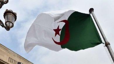 صورة الرئاسة الجزائرية تعلن رفضها للتدخلات الأجنبية في الأزمة الليبية