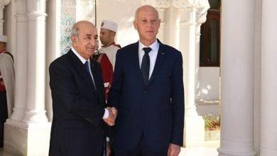 صورة تونس والجزائر تتفقان على رفض التدخل الأجنبي في ليبيا ورفض خطة السلام الأمريكية