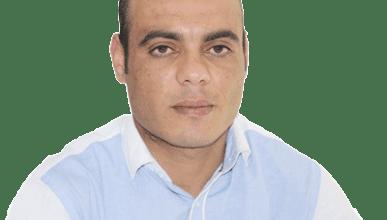وسام حمدي