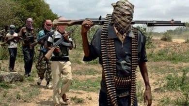 "Photo of الحكومة التشادية تعلن إقليمين ""منطقة حرب"" لمواجهة بوكو حرام الإرهابية"