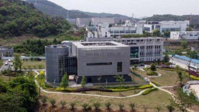 معهد علم الفيروسات في ووهان