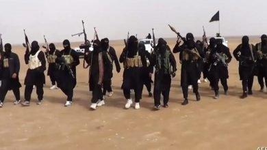 صورة الدواعش يهاجمون قرية في العراق ويقتلون شيخ عشيرة
