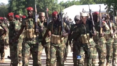 Photo of Chad Army Says 52 Troops, 1,000 Jihadists Killed In Offensive in the Lake Chad border region