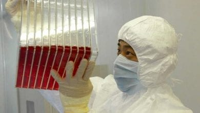 Photo of Coronavirus: China approves clinical trial for two experimental vaccines
