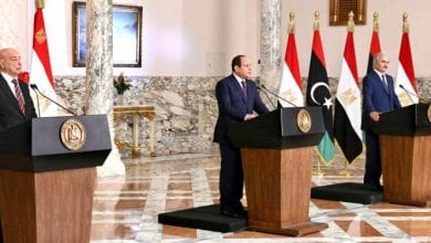 Photo of Arab Countries Welcome, Support Egypt's Initiative