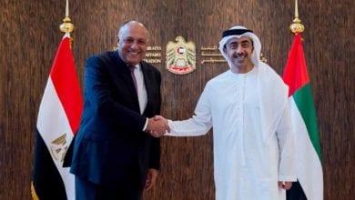 صورة الإمارات تعلن وقوفها إلى جانب مصر لحماية أمنها