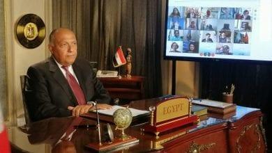 Photo of Egypt's Foreign Minister full speech on GERD at UNSC