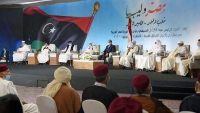 Photo of Al-Sisi: Egypt will not stand idle in face of threats to national security