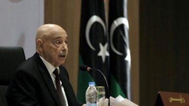 Photo de Le Parlement libyen appelle l'Egypte à intervenir pour protéger la sécurité de la Libye