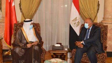 صورة مصر والبحرين تؤكدان دعمهما لحل الدولتين لتسوية الصراع الفلسطيني الإسرائيلي
