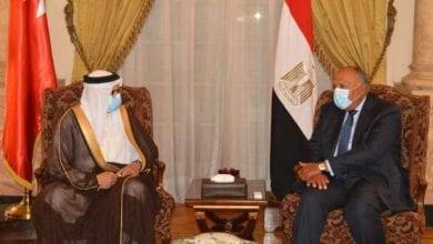 Photo de L'Égypte et Bahreïn soutiennent la solution à deux États pour régler le conflit israélo-palestinien