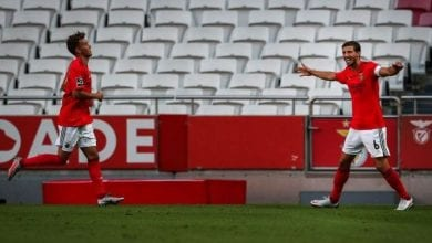 Photo of Manchester City will sign the captain of Benfica … In order to strengthen the defense line