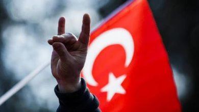 """صورة الحكومة الفرنسية تعتزم حل حركة """"الذئاب الرمادية"""" التركية المتطرفة"""