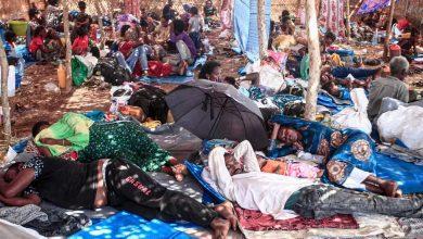 صورة الأمم المتحدة تحذر أزمة إنسانية واسعة على الحدود بين اثيوبيا والسودان
