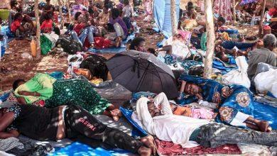 Photo de L'ONU: Une crise humanitaire à grande échelle à la frontière entre le Soudan et l'Éthiopie
