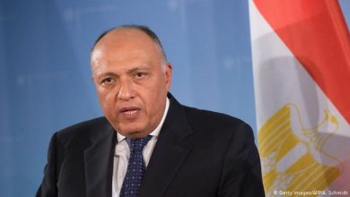 Photo of Egypt: FM Sameh Shoukry called for the halt of Turkey interference in Syrian and Libyan lands