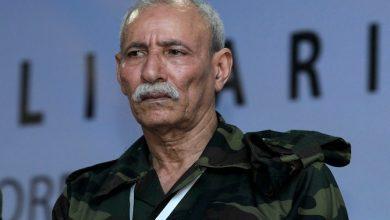 إبراهيم غالي