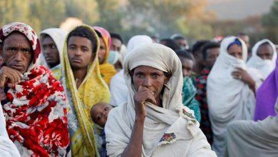 famine Tigré